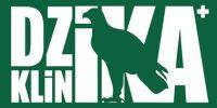 DK-Logo-zielone2